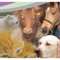 MUSKERRY VETERINARY CLINIC